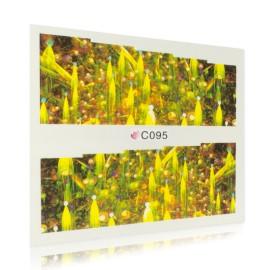 Fantázia matrica - C095