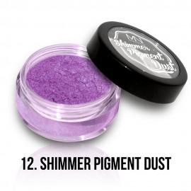 Shimmer Pigment Por - 12 - 2g